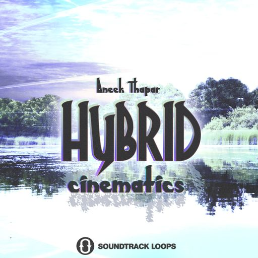 Hybrid Cinematics