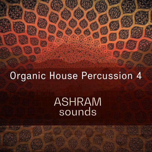 ASHRAM Organic House Percussion 4