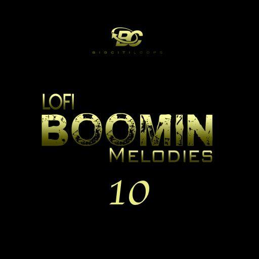 Lofi Boomin Melodies 10