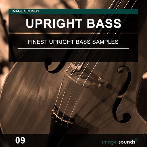 Upright Bass 09