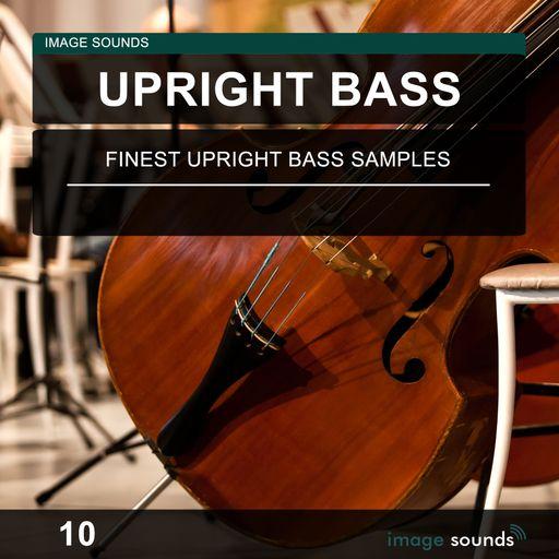 Upright Bass 10