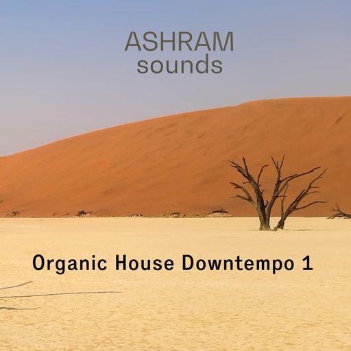 ASHRAM Organic House Downtempo 1