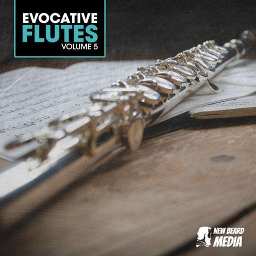 Evocative Flutes Vol 5