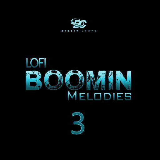 Lofi Boomin Melodies 3