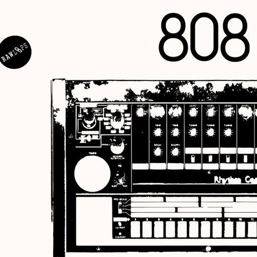 RAW 808 - Drum Hits