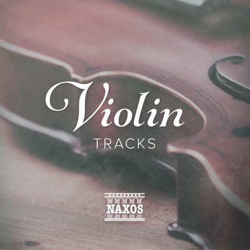 Classical Violin Samples