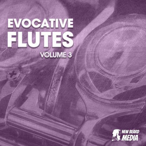 Evocative Flutes Vol 3