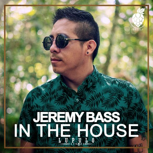 Jeremy Bass - In The House