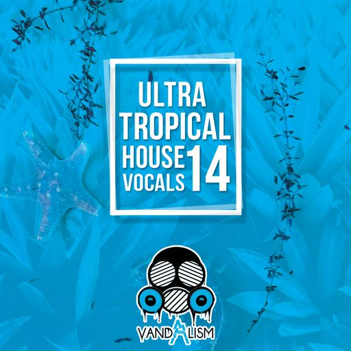 Ultra Tropical House Vocals 14