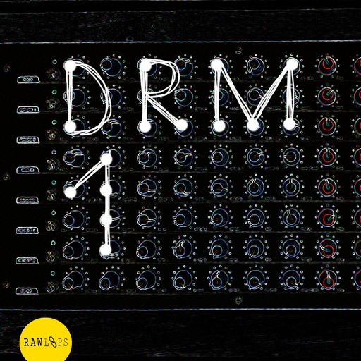 DRM1 - Drum Hits