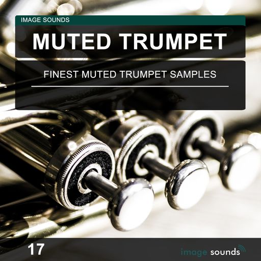 Muted Trumpet 17