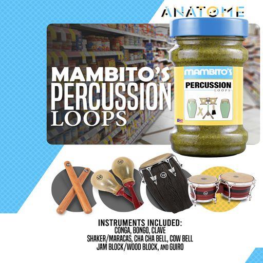 Mambito's Percussion Loops