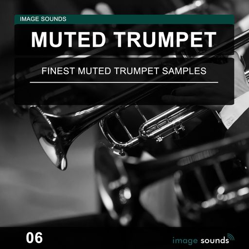 Muted Trumpet 06