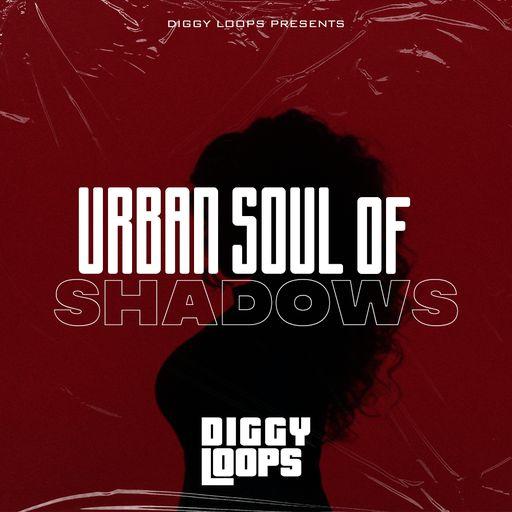 Urban Soul Of Shadows
