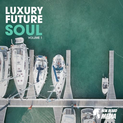 Luxury Future Soul Vol 1