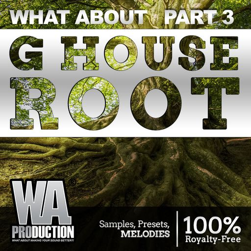 G House Root (Part 3)