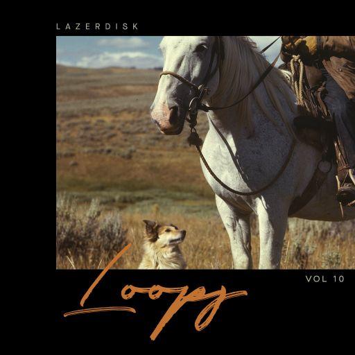 Lazerdisk Loops Vol. 10