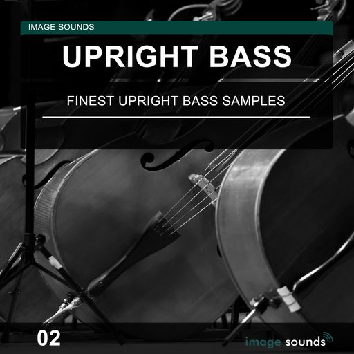 Upright Bass 02