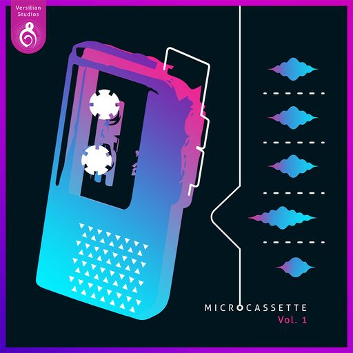 The Microcassette Sessions