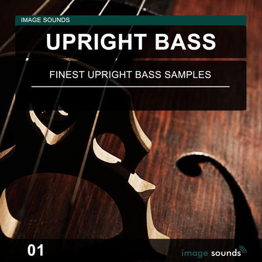 Upright Bass 01