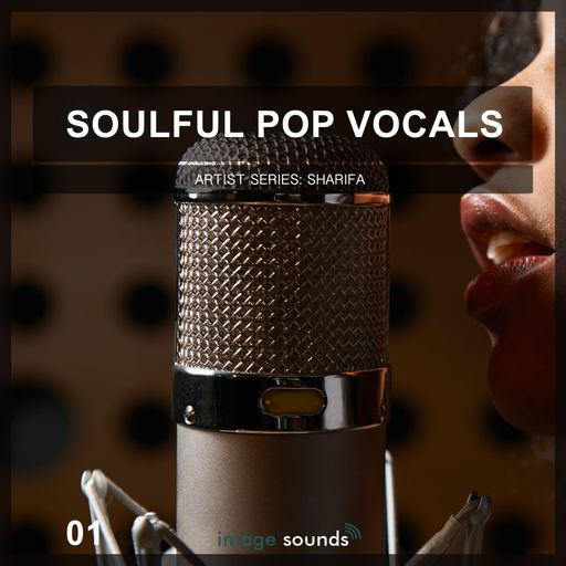 Soulful Pop Vocals 01