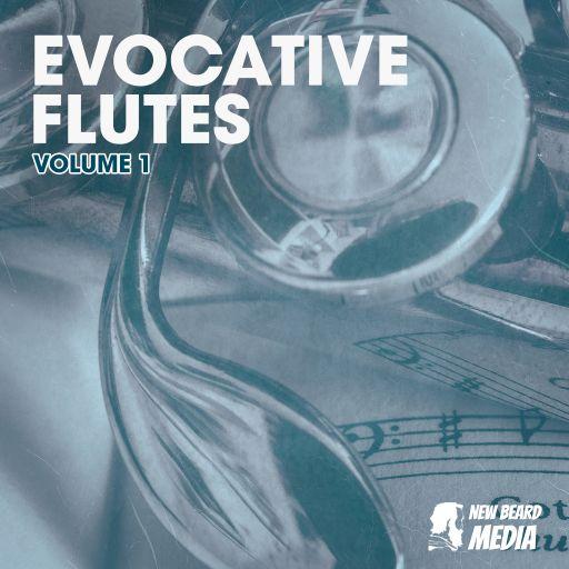 Evocative Flutes Vol 1