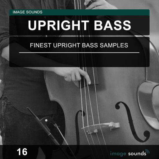 Upright Bass 16
