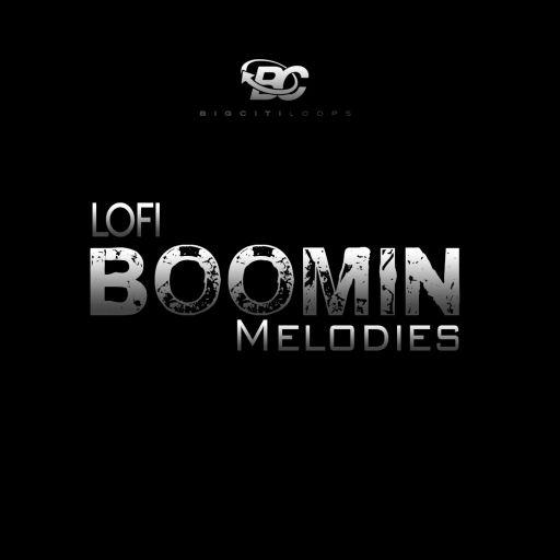 Lofi Boomin Melodies