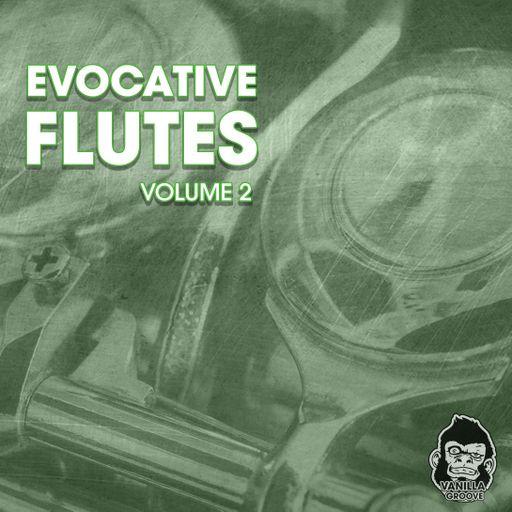 Evocative Flutes Vol 2