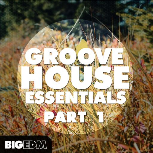 Groove House Essentials (Part 1)