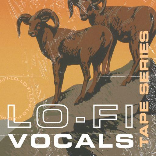 Tape Series Volume 3: Lo-Fi Vocals