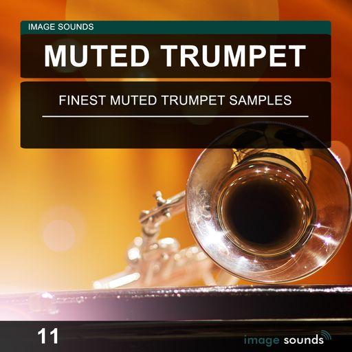 Muted Trumpet 11